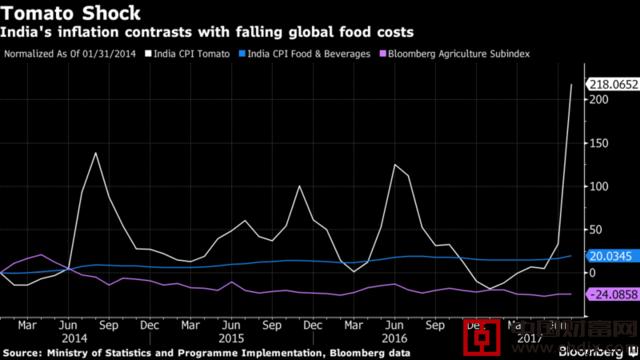 印度反通过膨胀的新敌?番茄!